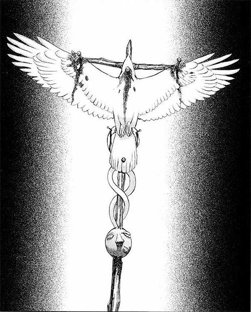 Griffith Invictus Hawk Symbols